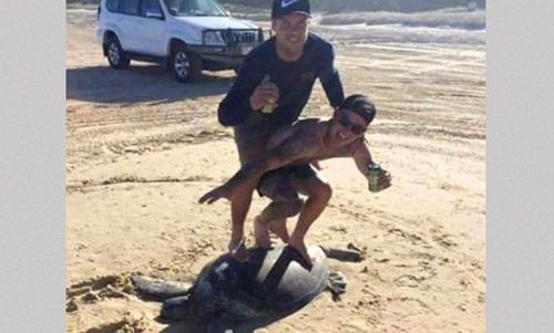 фото туристов с черепахой