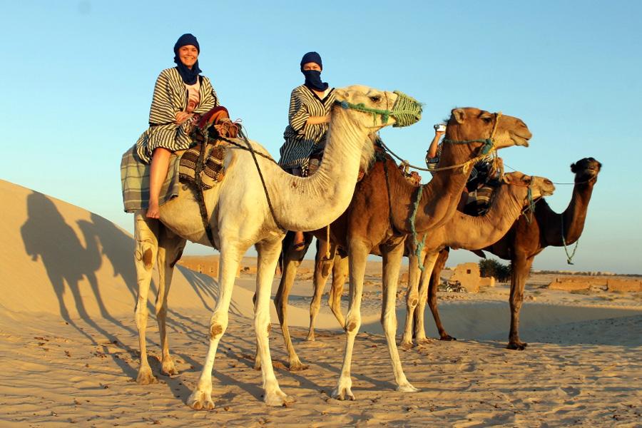 на верблюдах по сахаре