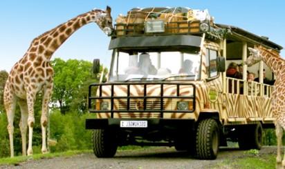 отпуск в африке