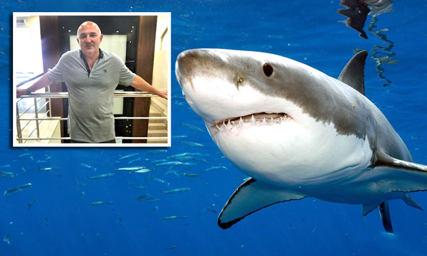 украинец спас австрийскую туристку от акулы