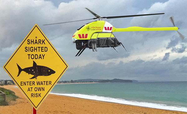 австралия дроны от акул