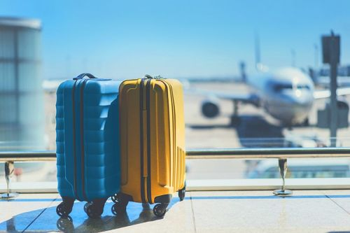 услуги доставки багажа от авиакомпании Emirates