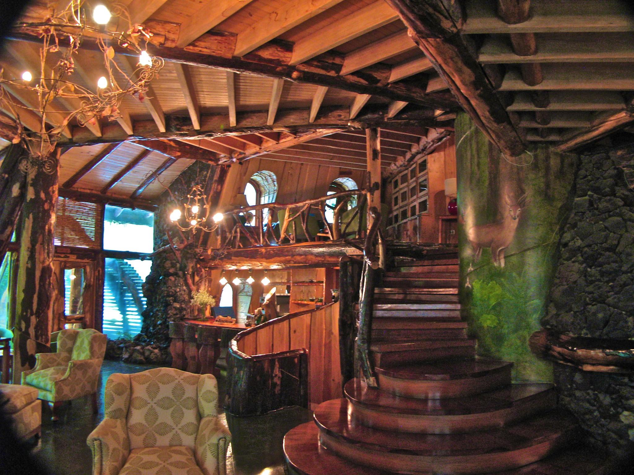 Лодж Huilo Montaña Mágica Lodge