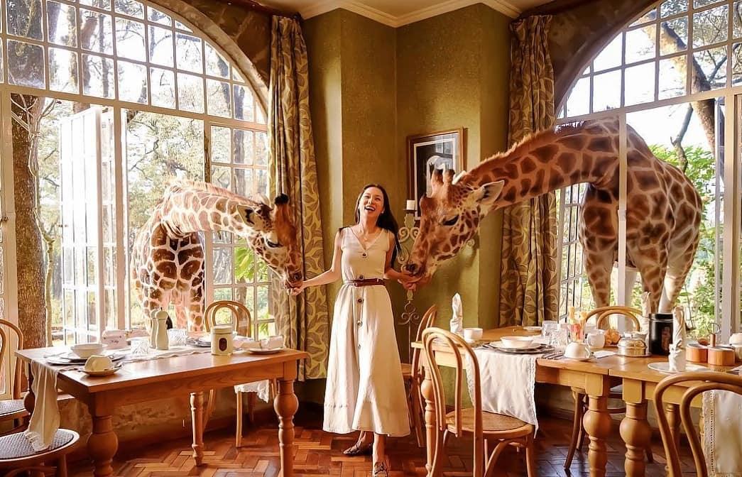 Бутик-отель Giraffe Manor