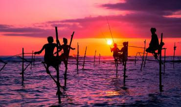 Туры на Шри-Ланку на 8 марта