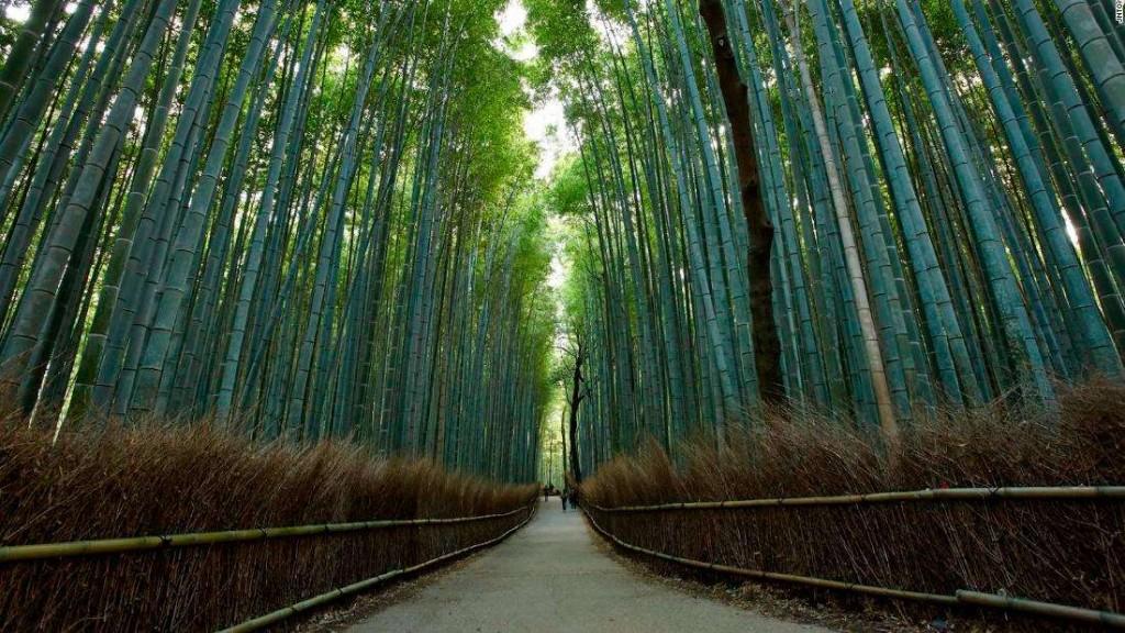 Киото заманивает туристов пустующими достопримечательностями