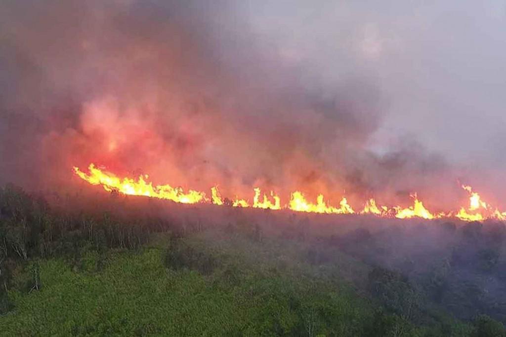 Пожары на севере Таиланда