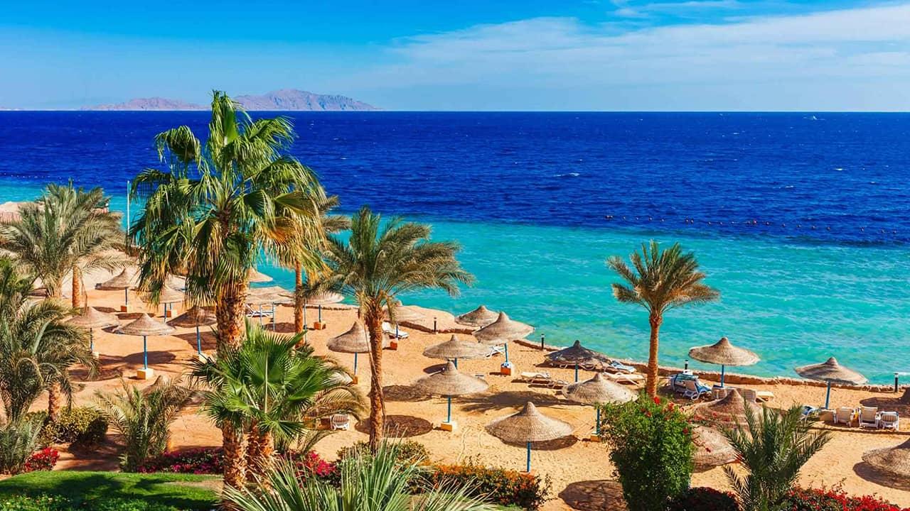 tury v sharm el sheih - Єгипет