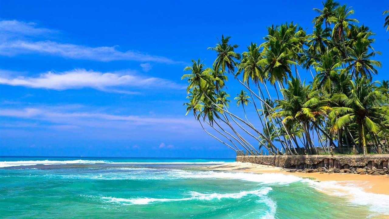 Туры на Шри-Ланку из Днепра